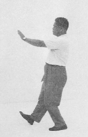Tai Chi Chuan (Square Form) 65. The Seven Stars Style