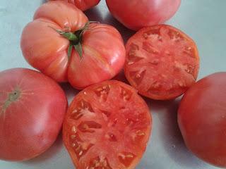 Tomate rosa que se utiliza para la mermelada de tomate rosa y albahaca