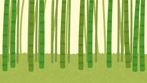 竹やぶのイラスト(背景素材・レイヤー2)