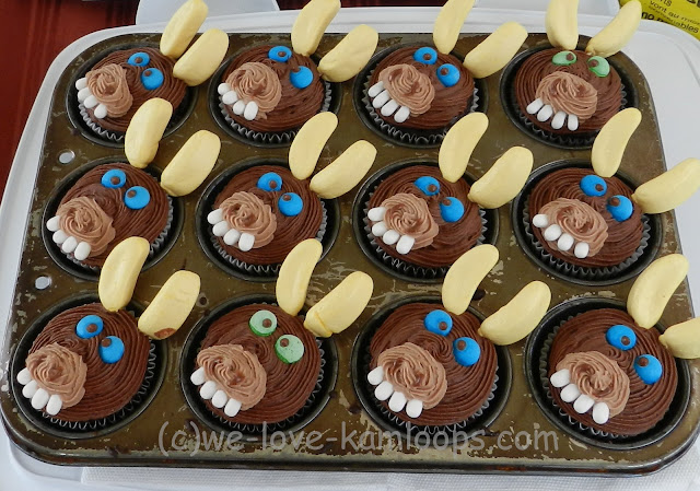 Donkey face on cupcakes sold as a fundraiser