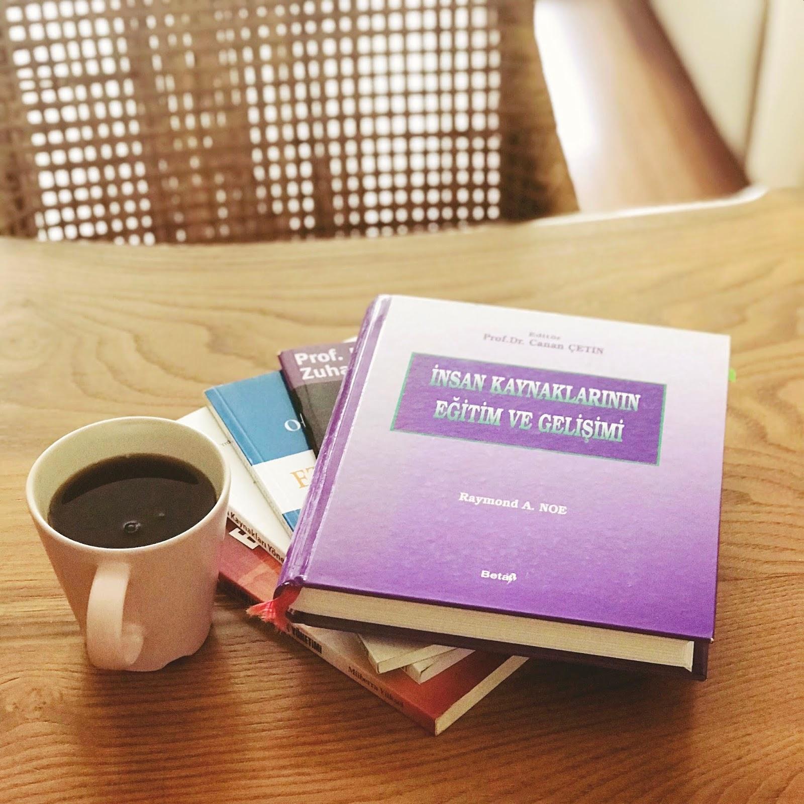 Insan Kaynaklari Yonetiminde Egitim ve Gelisim Ile Ilgili Kitaplar (1/2) (Kitap)