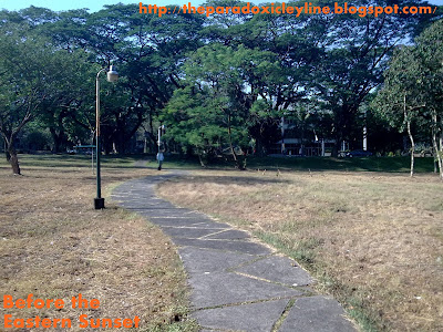 UP Diliman snake road