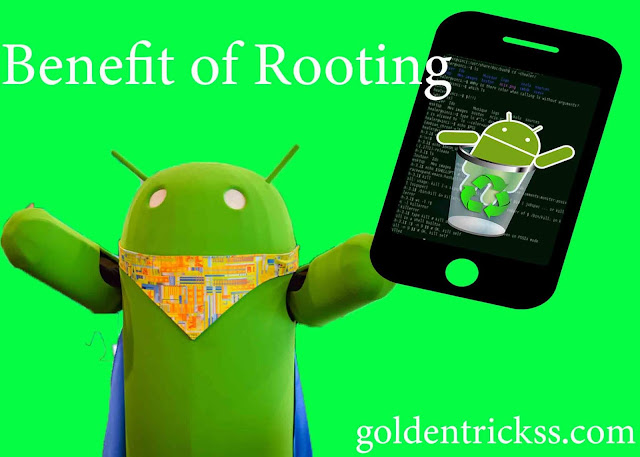 advantages of rooting
