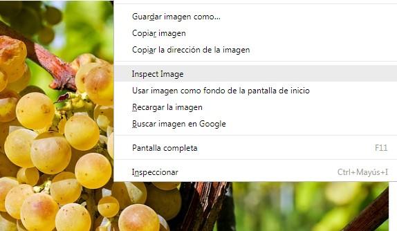 Inspector de imagen en Vivaldi Browser 1.12 - El Blog de HiiARA