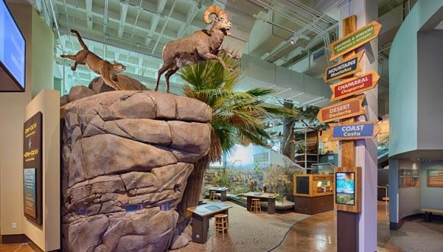 Sobre o Museu de História Natural de San Diego