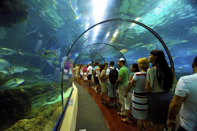 Túnel do L'Aquàrium em Barcelona