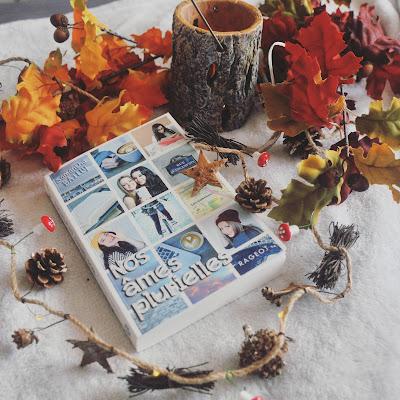 Avis tome 3 Nos âmes plurielles de Samantha Bailly suite de nos âmes jumelles et nos âmes rebelles livre automne Coin des licornes Blog lifestyle Toulouse