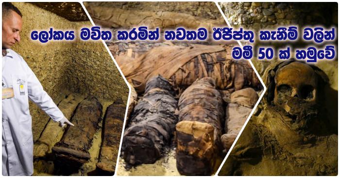 https://www.gossiplankanews.com/2019/02/50-egypt-tomb-mummies-archaeology-minya.html#more