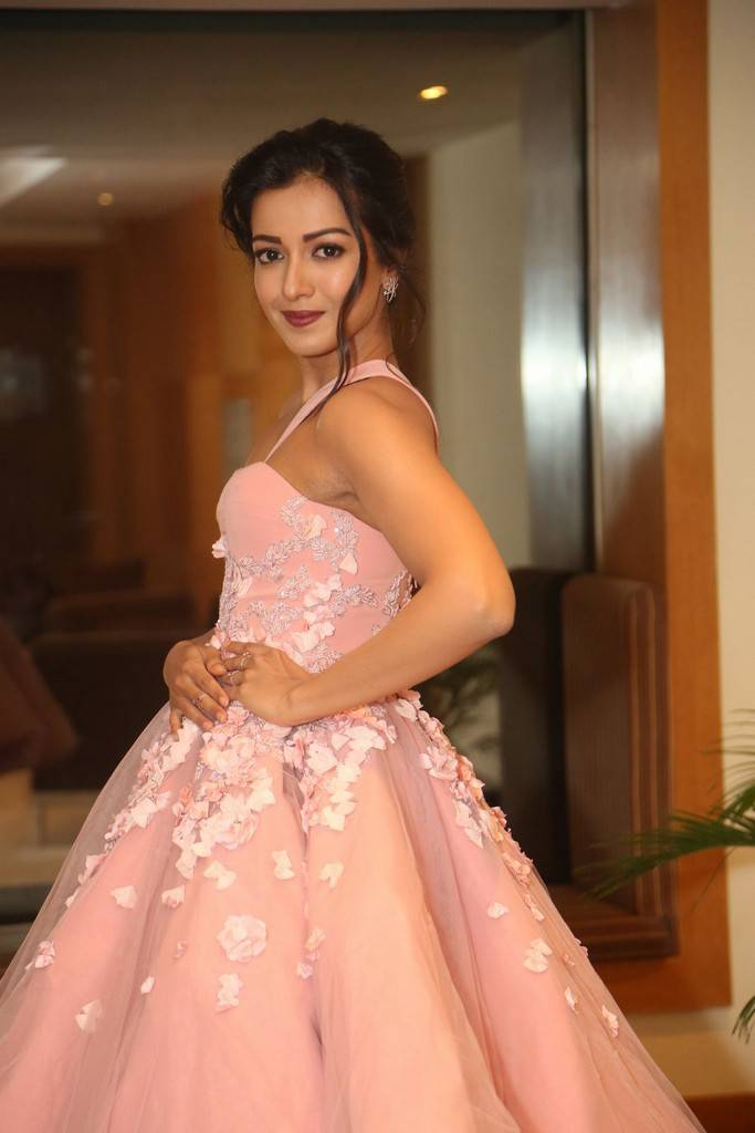Catherine Tresa At 64th Jio Filmfare Awards 2017 Photos