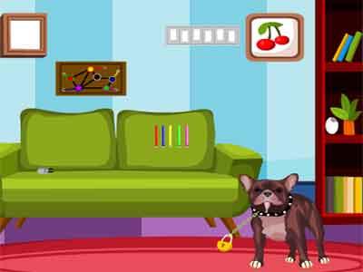 Dexter Dog Escape Juego Solucion