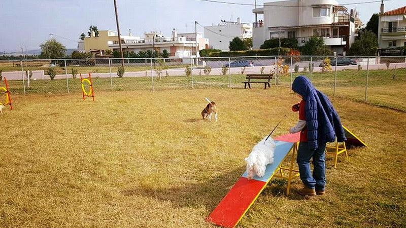 """Αλεξανδρούπολη: Παραδόθηκαν προς χρήση το Πάρκο Δεσποζόμενων Σκύλων και το """"Θέατρο Νερού"""""""