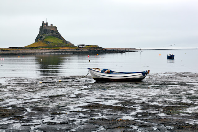 Lindisfarne Castle with boat at Holy Island, Northumberland by Martyn Ferry Photography