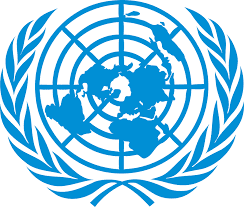 Job Opportunity at United Nations, Procurement Assistant