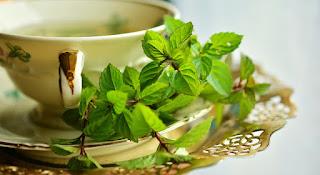 filiżanka z ziołami