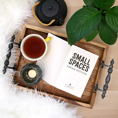 Small Spaces Book Review Sarah Epstein