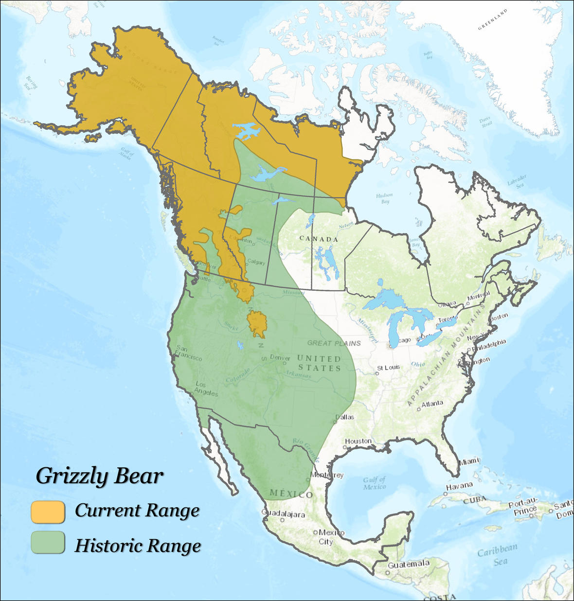 Grizzly bear range