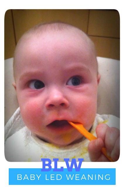 Baby Led Weaning - Die breifreie Beikost