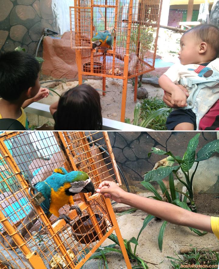 Bird's Paradise Pulau Langkawi
