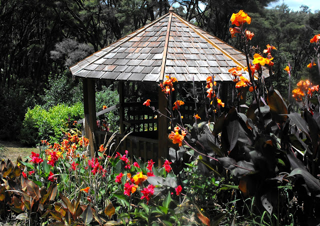 Red and orange Canna lilies around the wooden gazebo