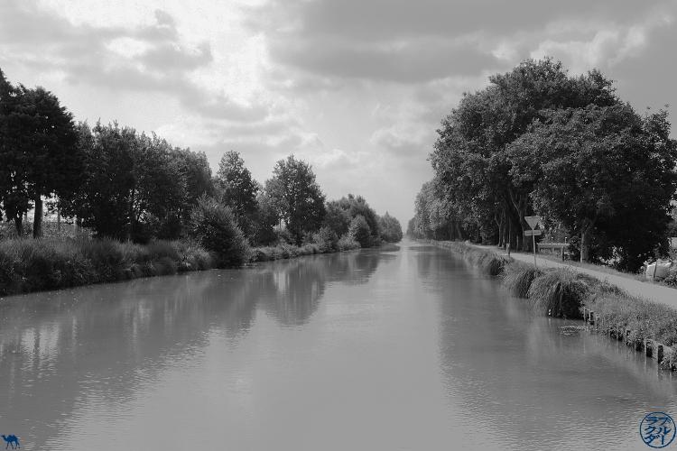 Le Chameau Bleu - Blog Voyage à Vélo sur le Canal de l'Entre deux Mers - Tarn et Garonne en vélo