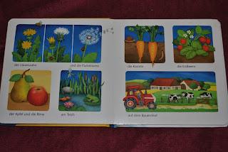 Meine ersten Bilder, flori, fructe, legume, ferma