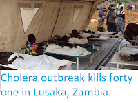 http://sciencythoughts.blogspot.com/2017/12/cholera-outbreak-kills-forty-one-in.html