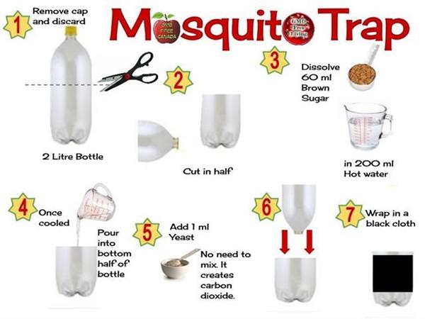 4 Cara Unik Usir Nyamuk Yang Super Ampuh Kumpulan Cara
