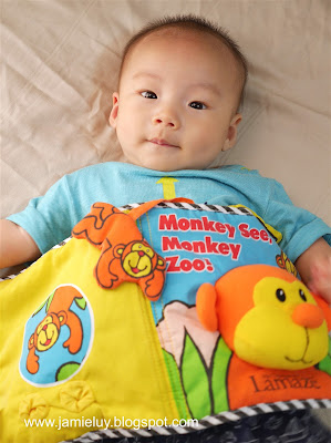 Baby with Monkey See Book