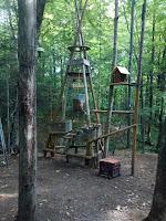 Domaine vert forêt aire de jeux
