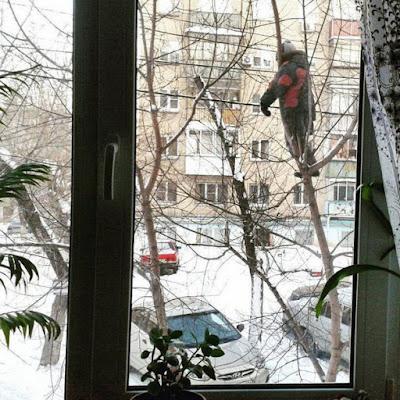 Mann auf Baum vor Fenster im Winter - Seltsame Menschen