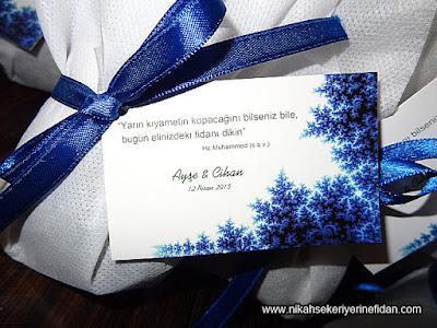 İstanbul Nikah Çamı Fidanı Ayşe Cihan - 2