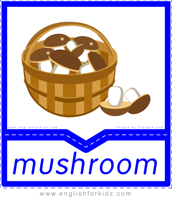 Mushrooms - English food flashcards for ESL students