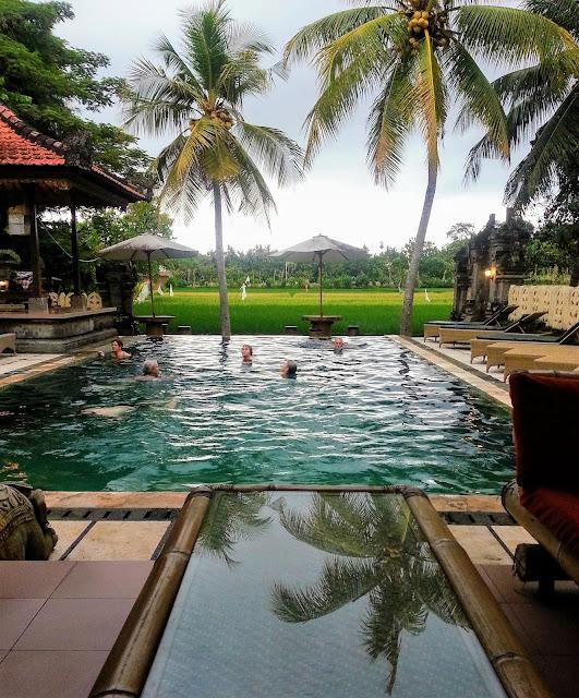 hotell med utsikt i Ubud