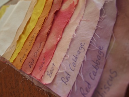 Names Of Dye For Each Fabric Sample