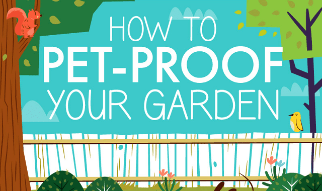 How to Pet Proof Your Garden