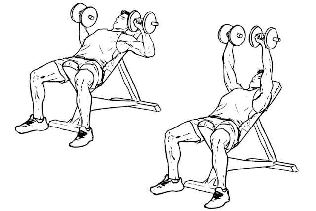 Incline-Dumbbell-Bench-Press.jpg