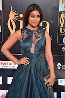 Shriya Saran in Beautiful Transparent Dark Gown IIFA Utsavam Awards 2017 074.JPG