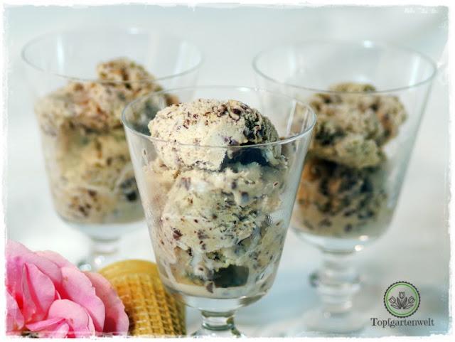 Stracciatella-Eis selber machen ohne Ei - Foodblog Topfgartenwelt