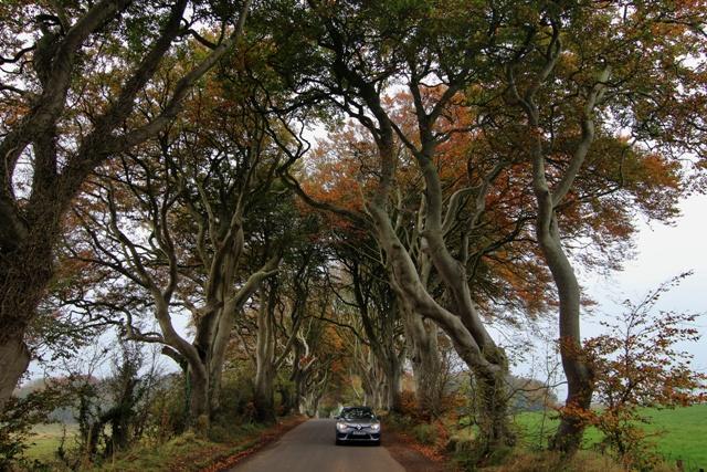 Conducir en Irlanda: buscando Hadas y Leprechauns