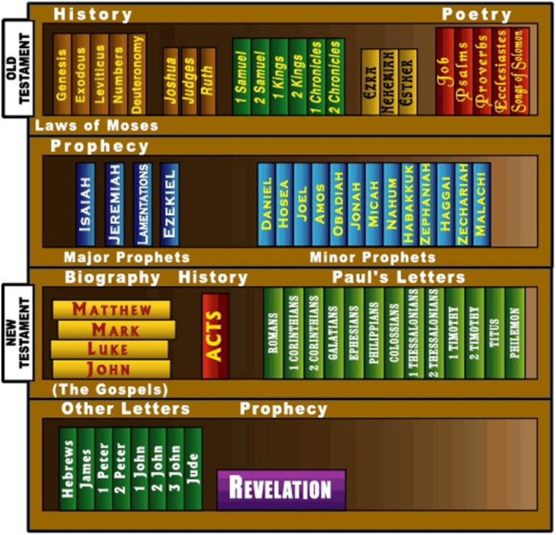 The books of the Old and New Testament