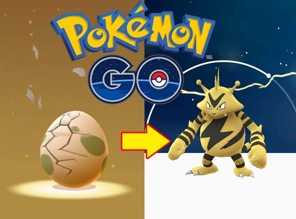 Pokémon GO : 10KM Egg Hatch Into Electabuzz