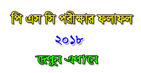 PSC Result 2019 Bangladesh All Board