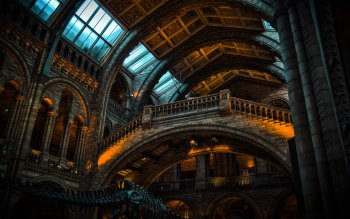 Wallpaper: Natural History Museum Architecture