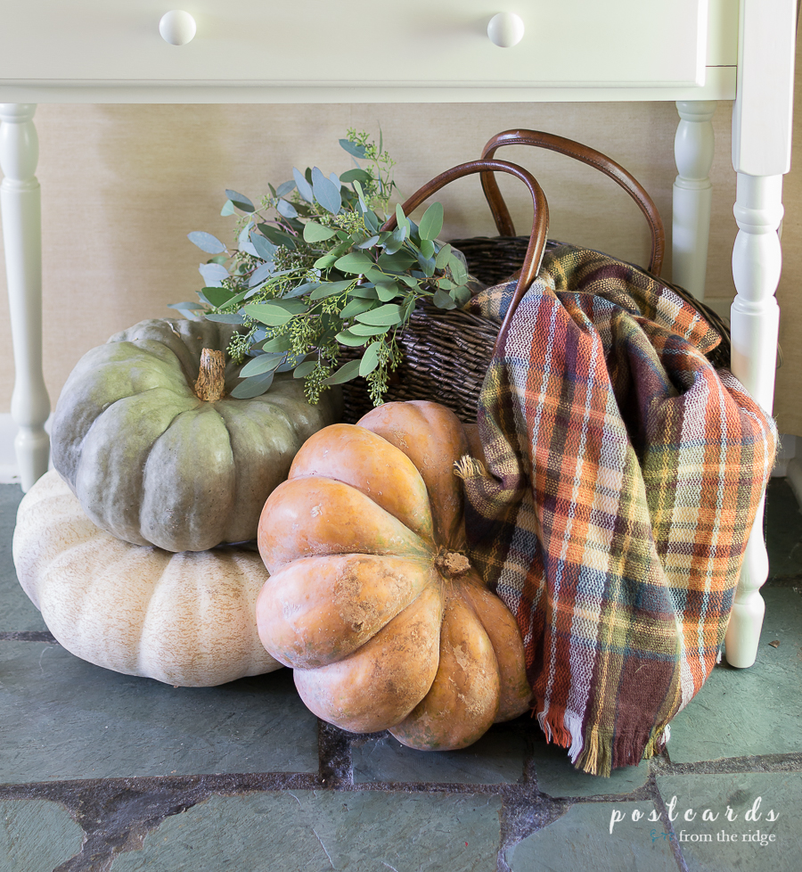 fall pumpkins with plaid blanket