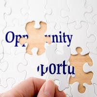 Analizar Oportunidades de Negocio