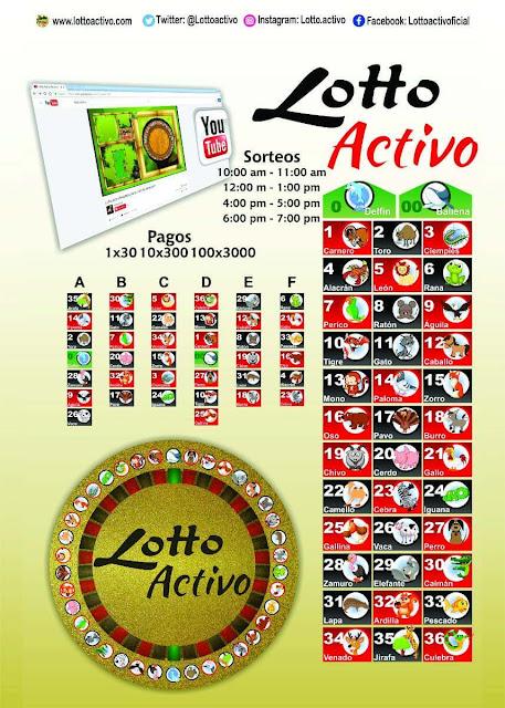 pancarta lotto activo