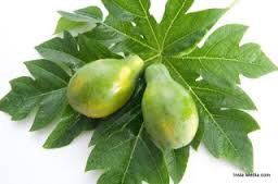Cervical cancer cure from papaya leaves