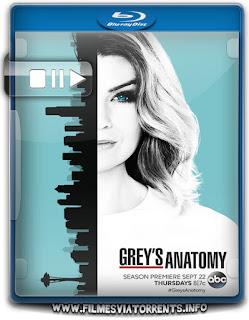 Grey's Anatomy 13ª Temporada Torrent