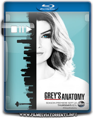 Grey's Anatomy 13ª Temporada Torrent