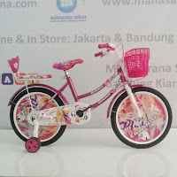 18 erminio sepeda anak perempuan ctb